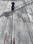 Skijouring is a favorite winter sport of mine.  Skijouring is being pulled by dogs or a dog while on cross-country skis.  It is a great exercise for both woman and dog.  If more dogs are used, the skier skates skis as the dogs mush at high speed.